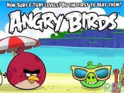愤怒的小鸟夏季野餐版 愤怒的小鸟夏日版